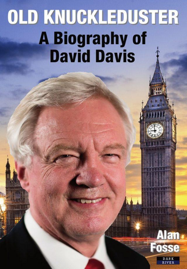 David Davis Book Biography