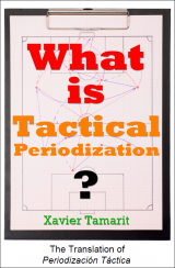 What is Tactical Periodization?